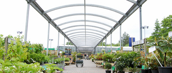 Experience the Fron Goch Garden Centre